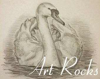 Swan - Original A4 Pencil Drawing - One off - No prints made