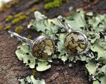 Lichen Earrings, Real Lichen Jewelry, Lichen Jewellery, Resin Earrings, Leverback Earrings, Botanical Jewelry, Forest Themed Jewelry