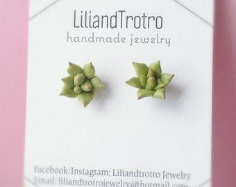 Mini Suculent stud earrings,cactus earrings, surgical steel earrings