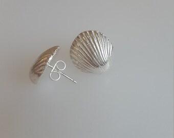 Silver shell earrings