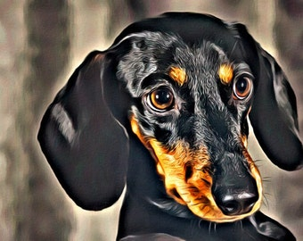 Dachshund - Print or Canvas