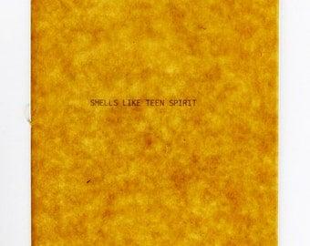 I Know What Nirvana Means - Smells Like Teen Spirit - The lyrics, explained