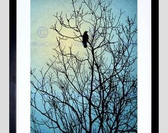 Animal Photo Raven Silhouette Tree Winter Fine Art Print FEBMP808B
