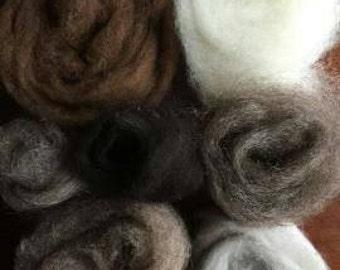 Alpaca Fleece (Carded)