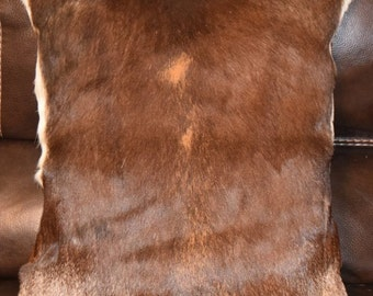Blackbuck deer hide pillow, 21in x 19in, with burnt sienna leather backing