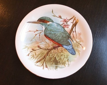 Vintage Ceramic Plate w Bird Theme / Made in Great Britain / Collector's Plate