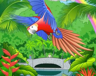 Puerto Rican Rain Forest