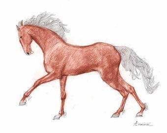 ORIGINAL HORSE DRAWING 8X10  small original drawing, handmade, fine art, modern drawings, horses, sketch, original technique, wall art