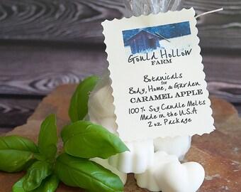 Caramel Apple ~ Soy Candle Melt