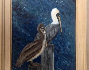 Pelicans - Original