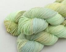 Seagrass on Tender, non superwash merino, DK weight yarn handdyed indie