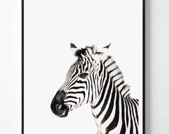 Zebra Print, Zebra printable Wall Art, Safari animal, Animal print, Animal Decor, Safari African Animal Print, Scandinavian printable art