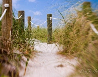 Walkway to the Beach Photographic Print