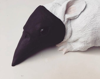 It started at a young age... Baby Bunny in Crow Mask Sculpture