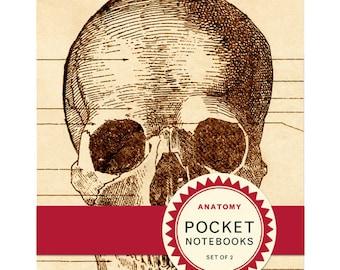 Anatomy Pocket Notebook Set of 2 mini notebooks