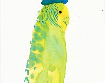 Budgie in a Beret / watercolour gouache original