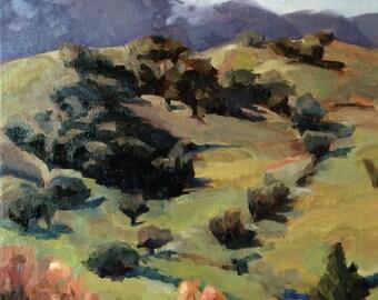 Art landscape, original oil painting on canvas - Santa Teresa Hillside