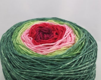 Watermelon Panoramic Gradient, 100g Corriedale, dyed to order