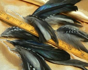 Gorgeous black and white long feather earrings,nine inch long chain earrings, natural feather earrings, Gypsy, Boho,edm festival
