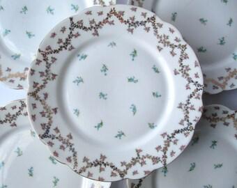Vintage Austrian China Rose Pink Blue Salad Plates Set of Five