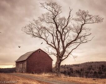 Autumn Barn and Tree, Old barn landscape, Surreal Farm and Barn scene, Art Photography Print