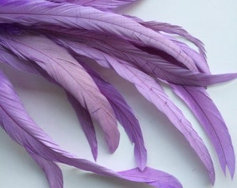 ROOSTER TAIL Feathers  X - long  /  Wisteria  Purple   / 185