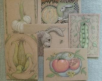 Pen and ink original garden cards