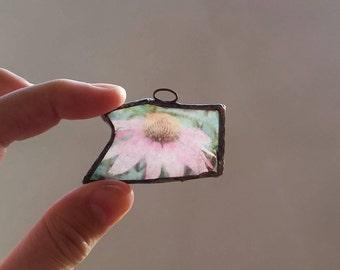 cone flower on beach glass - pendant, ornament, suncatcher