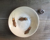 Small cockroach bowl,  insect bowl, quirky funny gift for him, rustic home decor, April fools day gift