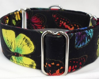 Butterflies on Black Greyhound, Whippet, Galgo, Pit Bull, Dog Sighthound Martingale Collar