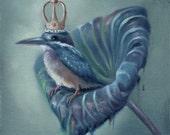 The King Colibri Print on Paper / Ilona Cutts