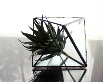 Modern Geometric Octahedron Pyramid Glass Terrarium- Stained Glass Decor - Home Decor