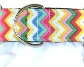 1.5 inch chevron, colorful, greyhound martingale dog collar, rainbow, vertical stripes, collar with tag keeper-Chevron-Tutti Frutti