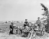 Restored Vintage Photograph of Great Dane Dogs Wearing Sunglasses Pulling Cart with Boys, Digital Download
