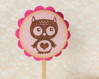 Owl Cupcake Toppers, Baby Shower, Gender Reveal Party, Birthday, Baby Girl, Cake Toppers, Plant Picks