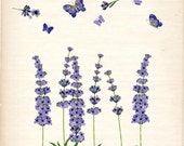 ON SALE Flower clip art, vintage lavender, botanical flowers,butterfly clip art, purple flowers, card making, border , INSTANT Download