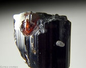 New Find Garnet Crystals on Black Tourmaline, Small Rare Piece // Root Chakra // Crystal Healing // Mineral Specimen