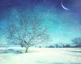 lonely tree photo, winter photo, landscape photo, tree winter, bare tree, moon, crescent, tree, home art, textured, blue, snowing, canvas