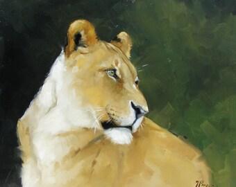 Original oil painting - wildlife art  - lion - big cat - by UK artist j Payne