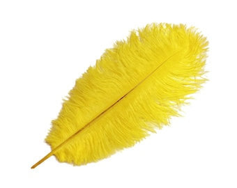 """Ostrich Feathers, 10 Pieces - 8-10"""" YELLOW Ostrich Dyed Drabs Body Feathers : 4000"""