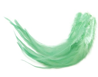 1 Dozen - Medium SOLID AQUA MINT Rooster Hair Extension Feathers : 107