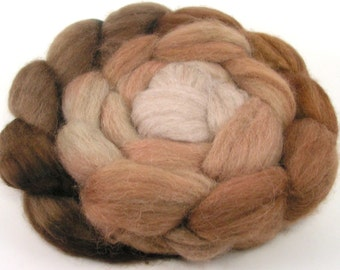 Spinning Fiber - Baby Alpaca Combed Top - Cappuccino - gradient dyed roving