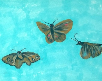 3 brown moths original painting