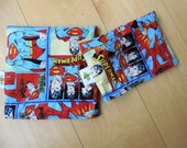Md/Sm Superman Set Snack Sandwich Baggie Bag Set with water resistant lining