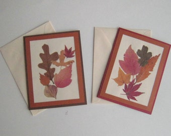 Real Pressed Fall Leaves Greeting Cards Set of Two Blank Inside