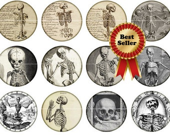 "Skeleton Magnets, Skeleton, Pins, Skeleton Badges, 1""  Vintage Skeleton Flat Back Buttons, Hollow Backs, Cabochons, 12 ct"