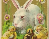 RESERVED LISTING (SABINE) Vintage Easter Postcard White Bunny and Chicks with Hurondale Ontario Split Ring Cancel (Closed Post Office) 1911