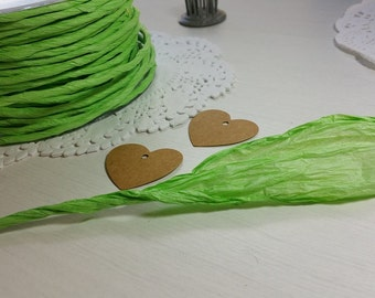 5m Twisted Paper Cord/Ribbon 3-100mm ~ Lime Green ~ *Gifts*Decorations*