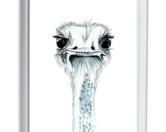 Framed Percy the Ostrich watercolour print