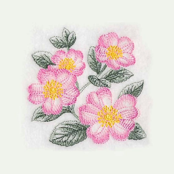Rose Embroidered Towels: Sketched Dog Roses Tea Towel Embroidered By
